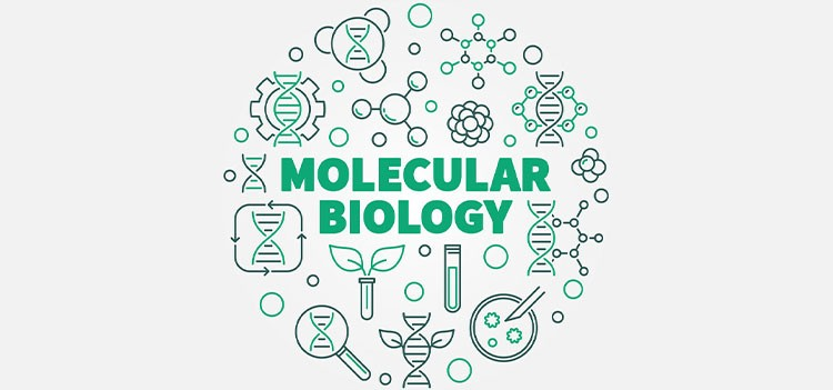 All you should know about M.Sc Molecular Biology and Human Genetics Course