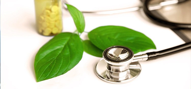 What are the Careers and Scopes and job roles for a Naturopathic Doctor?