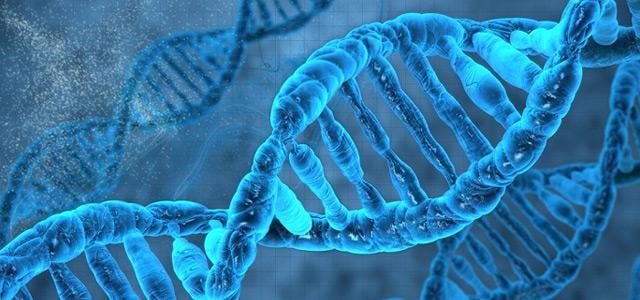 BSc Genetics  Admissions in Bangalore