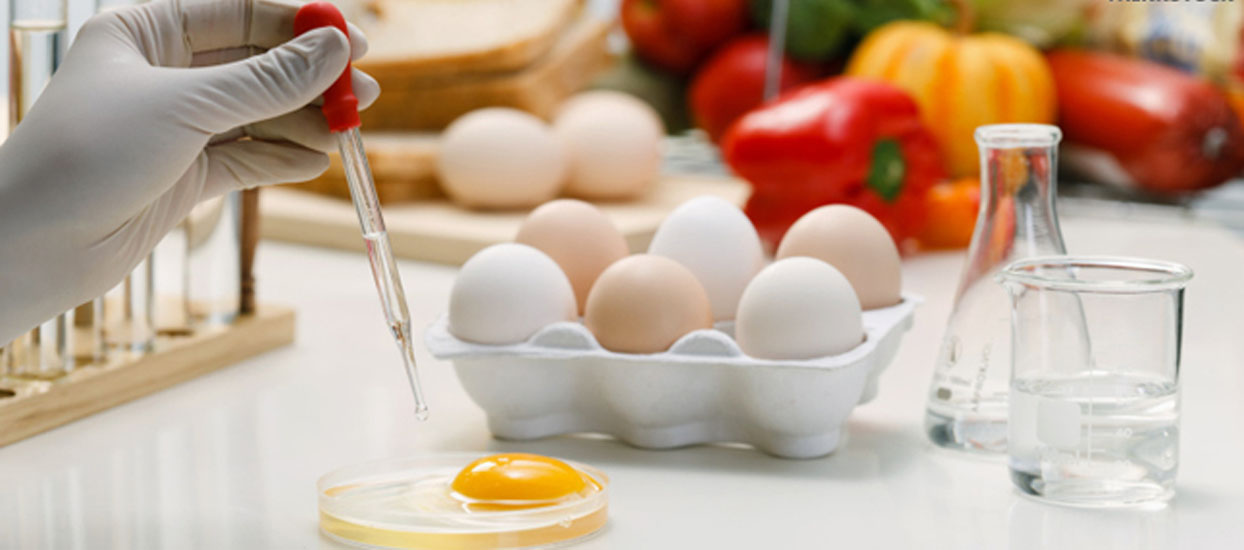 Bsc Honours in Food Science and Technology  Admissions in Bangalore