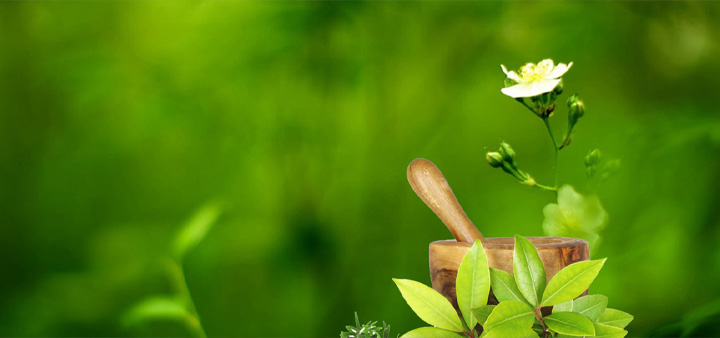Private Ayurvedic Colleges In Bangalore